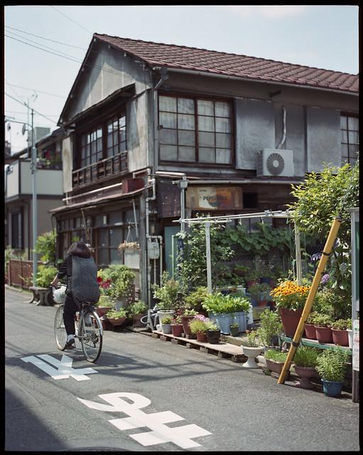 pepsi floral ride