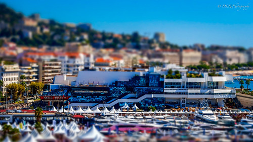 Cannes Film Festival, France | by Darren Reichel