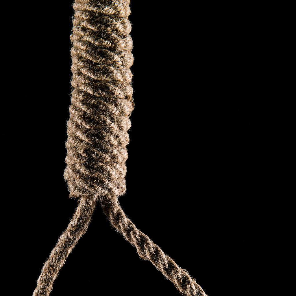 Image result for noose
