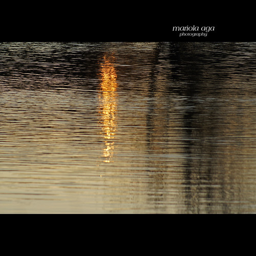 park autumn sunset sunlight lake abstract reflection nature water square surface thegalaxy