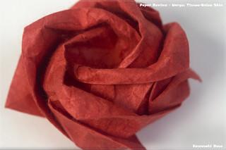 Unryu (Tissue-Onion Skin) - Rose   by garibi ilan