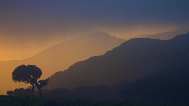 Brumoso atardecer / Misty sunset