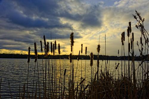 light sunset sky lake snow silhouette clouds pond bamboo idyllic walpole ronantic
