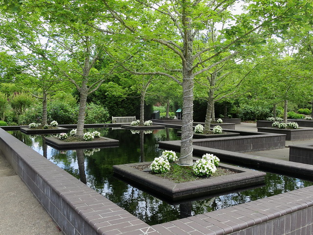 Reflecting Pools IMG_1648