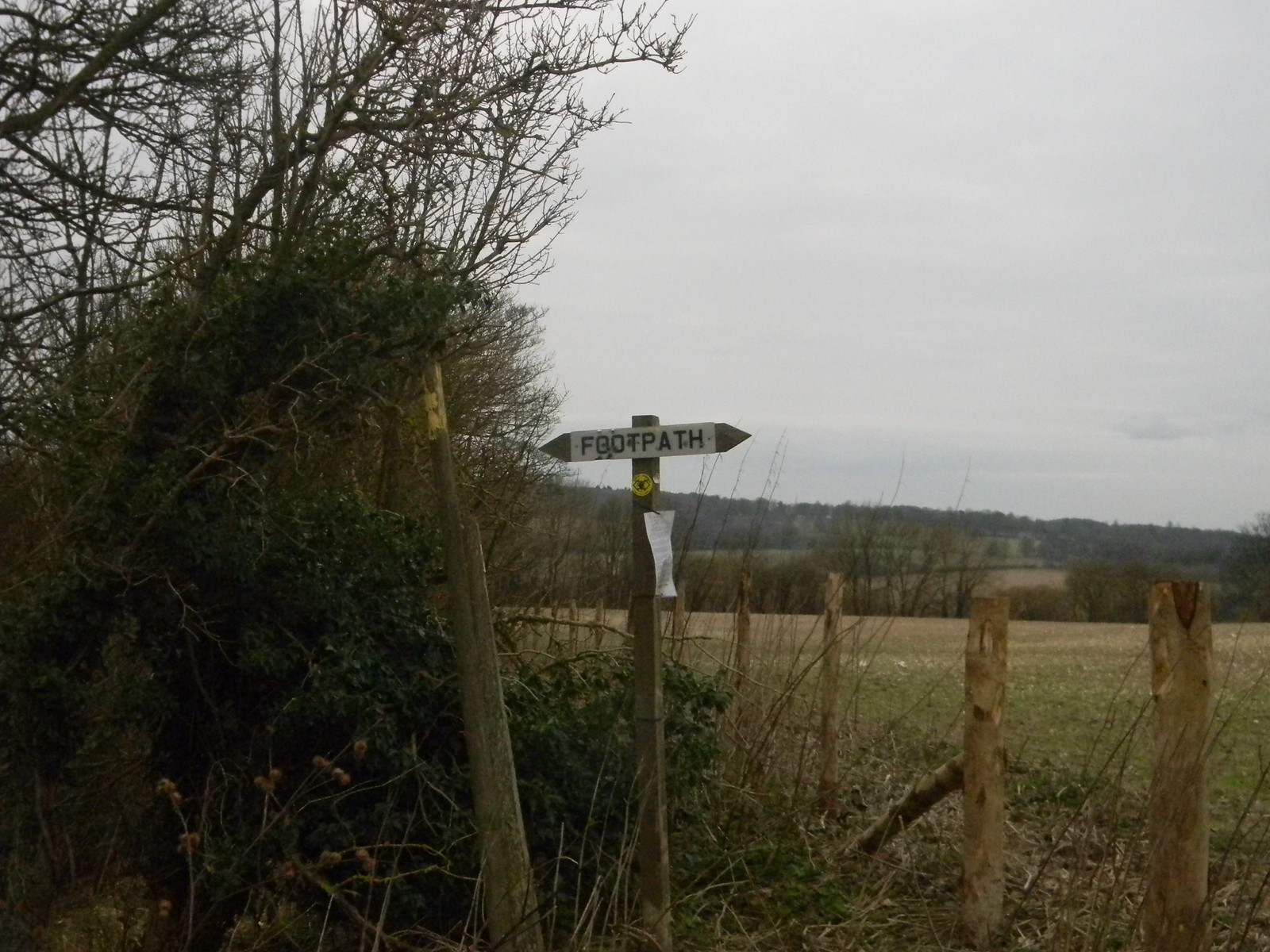 Where's the path? Chilham Circular
