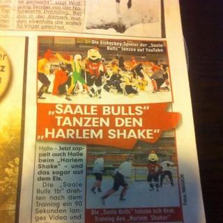 Bild Zeitung Halle Saale