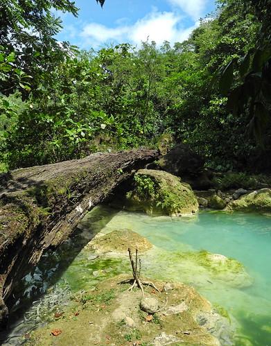 creek river log philippines rotten philippinen negrosoriental magasofalls