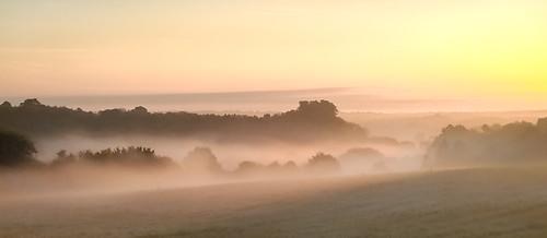 dog walking redwellwood sunrise iphone5 landscape hertfordshire