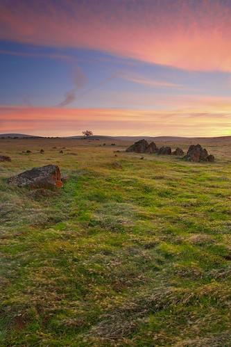 california ca sunset usa sunrise canon landscape photography oak folsom wideangle sacramento prairie plains oaktree 1740 erno canon5dmarkiii ernogy