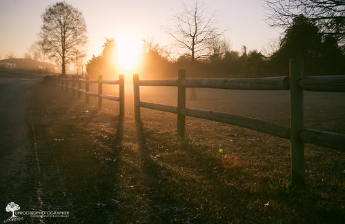 morning weather silhouette fog sunrise fence nc nikon shadows foggy northcarolina lensflare monday posts goodmorning d600 newbern lawsoncreekpark