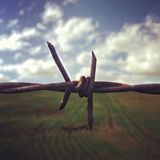 Land vs. Sky | by Dirk Dallas