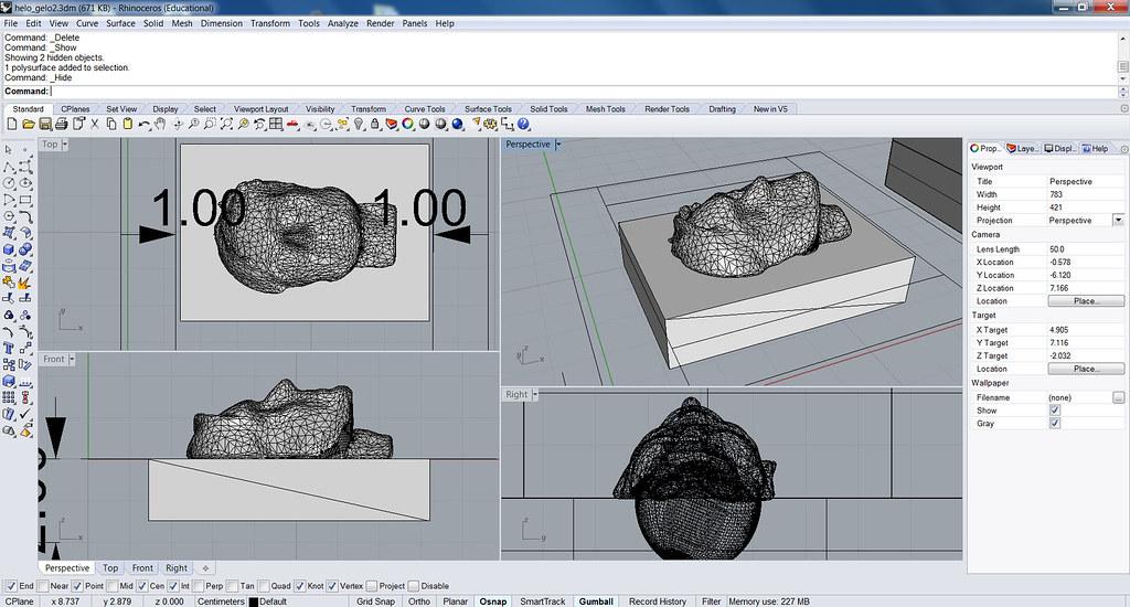 Rhino Drafting