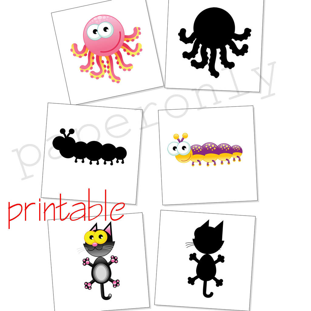 graphic regarding Printable Animal Flash Cards titled sport hues of pets - flash playing cards - printable PDF Flickr