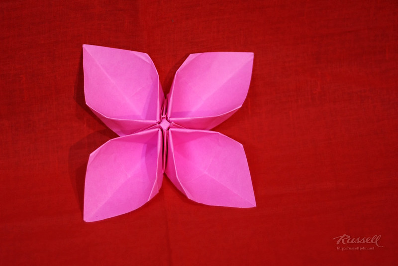 Origami Hollow-Petal Flower