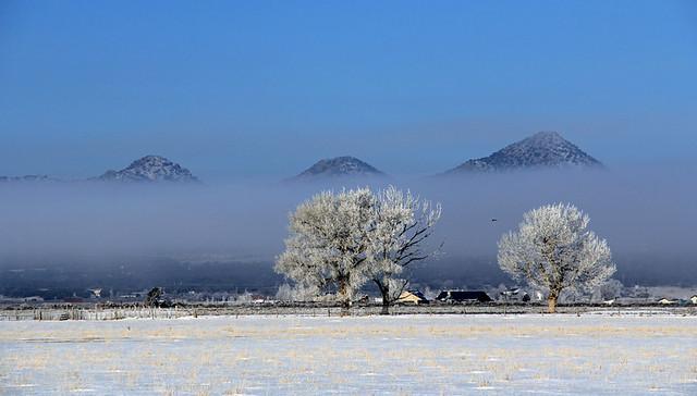 Cold Morning at Three Peaks, January 2013 (1)