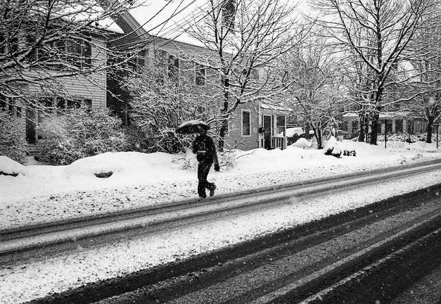 Elm Street, February 24