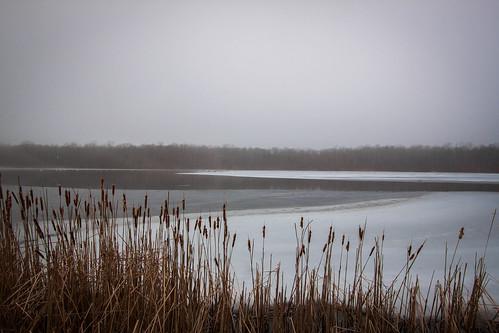 lake pa cotton poconos icylake winterlandscape icywater uppermountbethel minsilake