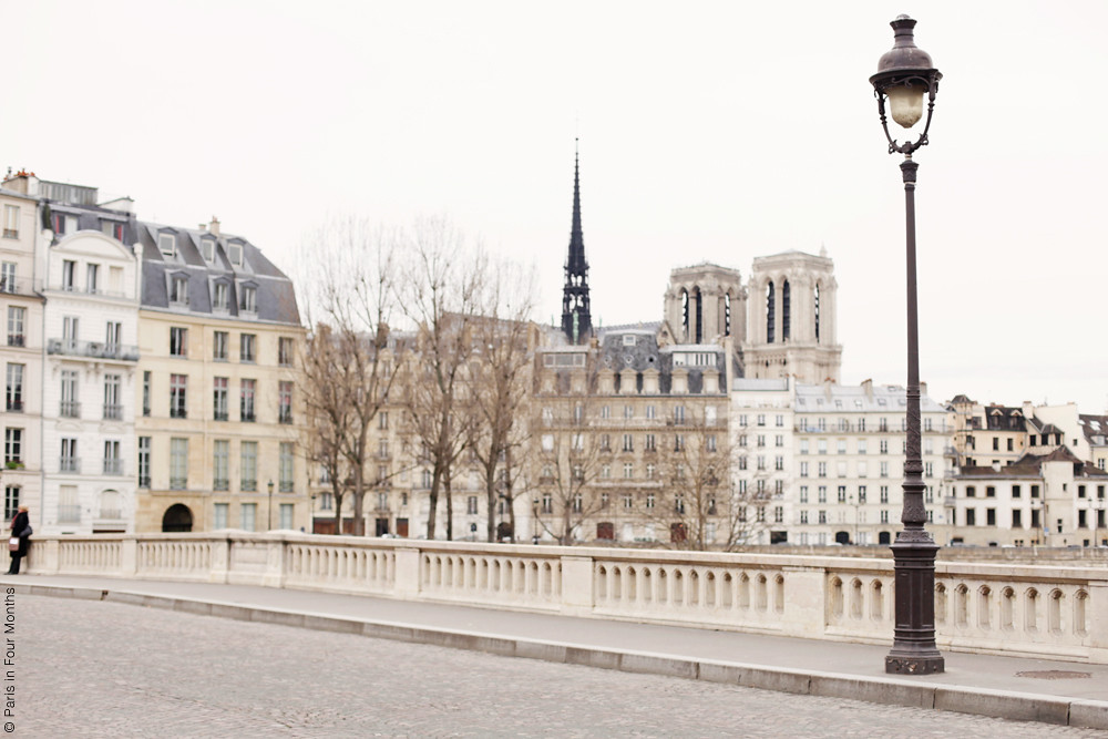 View Over Notre Dame Paris France 2013 Carin Olsson Flickr