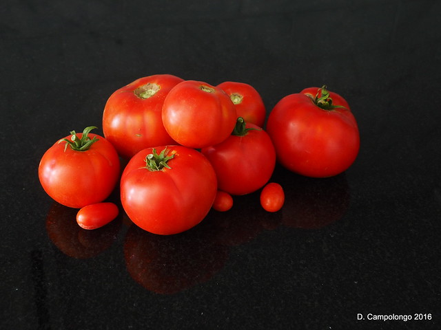 Tomatoes in the Dark