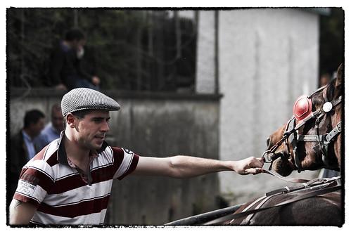 street ireland portrait horse irish heritage history arm candid fair cap handler ballinasloe sulky fullard frankfullard