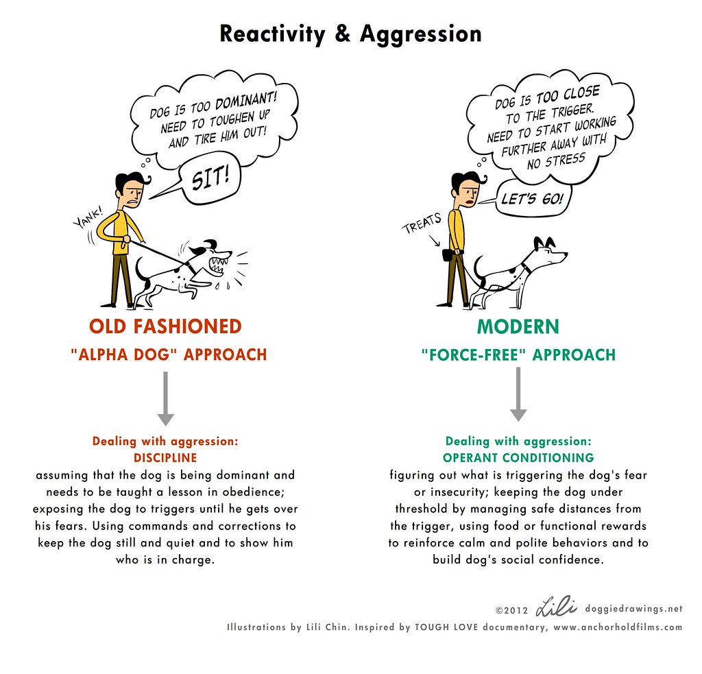 Trad vs Mod training: aggression   After watching the TOUGH