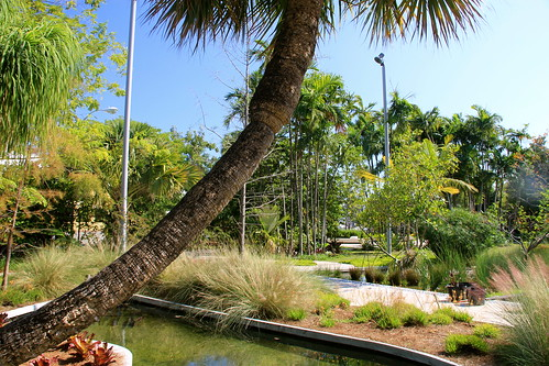 Miami Beach Botanical Garden | by danxoneil