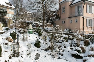 Our garden getting rid of its winter clothes (for the moment)