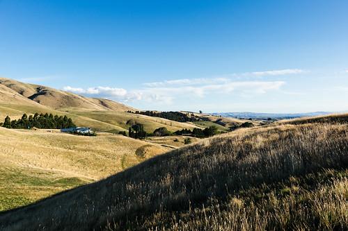 leica newzealand grass 35mm landscape farm 14 rangefinder hills asph masterton m9 fle summiluxm alienskinexposure
