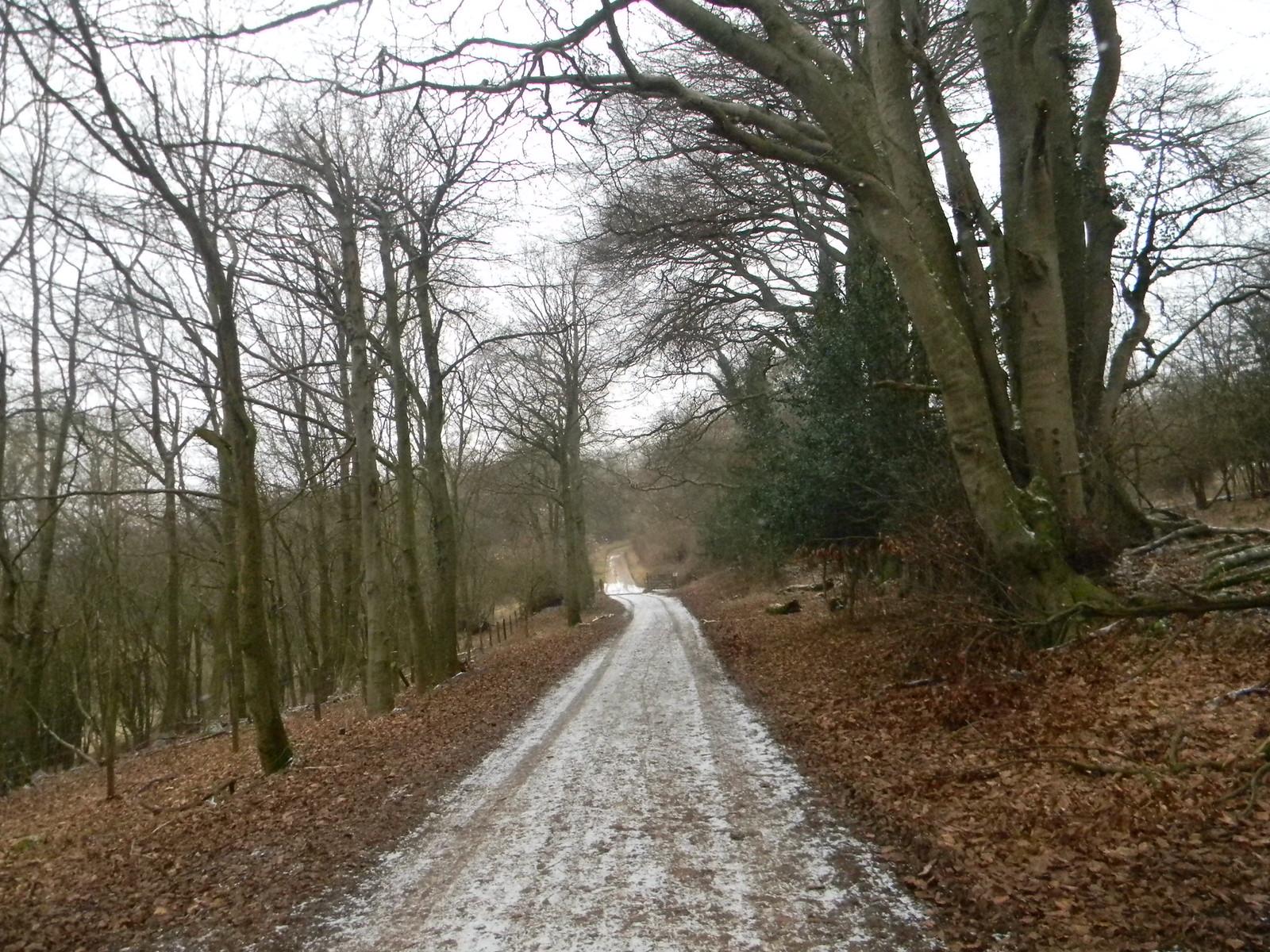 Snowy path 2 Tring to Berkhamsted (via shortcut)