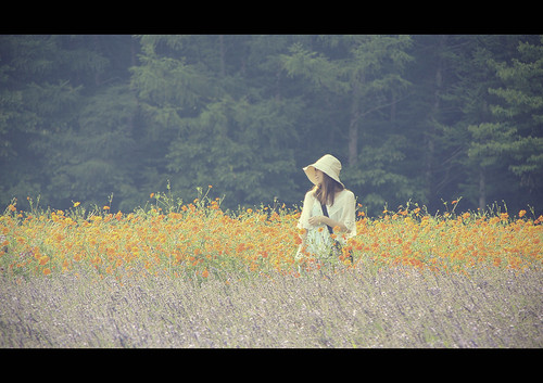 wood flowers summer sky flores flower color nature colors girl field japan clouds garden landscape japanese hokkaido cloudy farm lavender paisaje explore bosque land 北海道 fields furano hokaido tomita campos 2012 granja lavanda loreak japón baso 富良野 japonia lorategi liliak 富良野市 zelaiak ikuspegia tomitas
