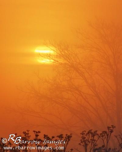 sun fog sunrise tn nashville bellsbendpark