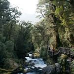 Nueva Zelanda, Isla Sur 50