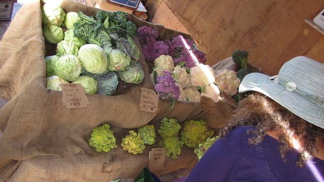IMG_7121 Goleta Ellwood organic farm stand Langlo Ranch road cauliflower