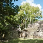 Guatemala, Ruinas de Tikal 23