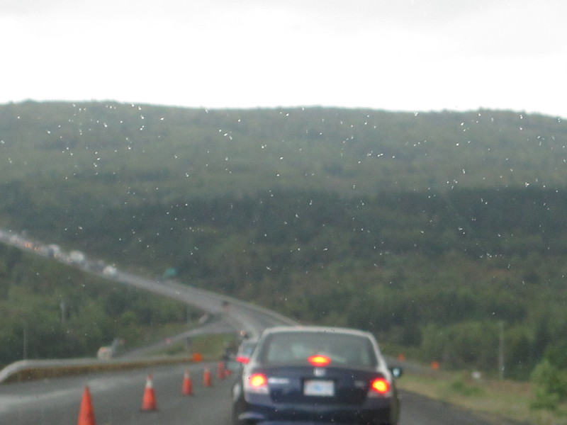 Highway Drizzle