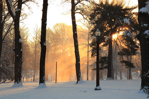park winter light sunlight snow lamp sunrise post stlouis missouri towergrove rays saintlouis towergrovepark stlouismissouri
