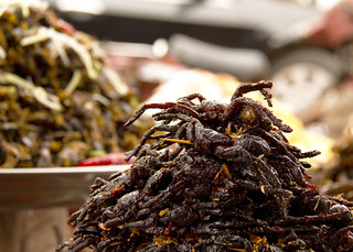 Cooked Tarantulas in Cambodia | by DavidDennisPhotos.com