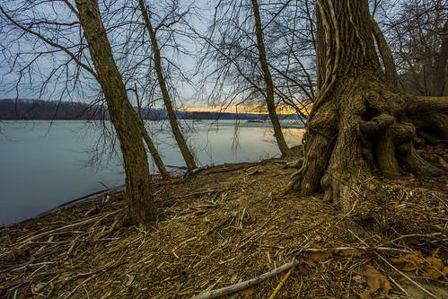 longexposure morning trees bulb sunrise river maryland susquehanna susquehannastatepark marylandstatepark
