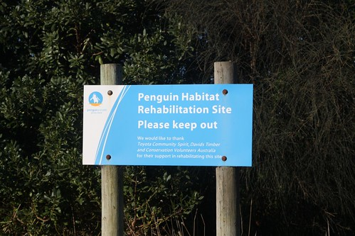 'Penguin habitat rehabilition site' sign