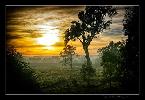 sunrise river swan bush australia perth western