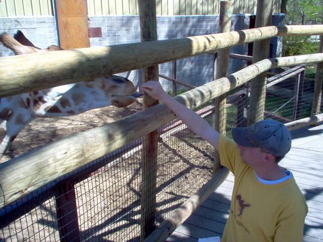 My friend Jonathan Sharp with a giraffe