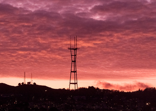 Sutro Cloud Forest November 13, 2011