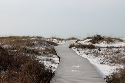Dune boardwalk