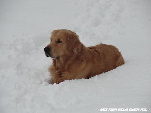 2013_02_24 - hooodne snehu