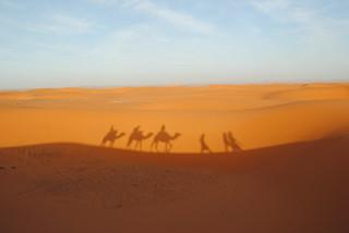 Desert Silhouette | by just_a_cheeseburger