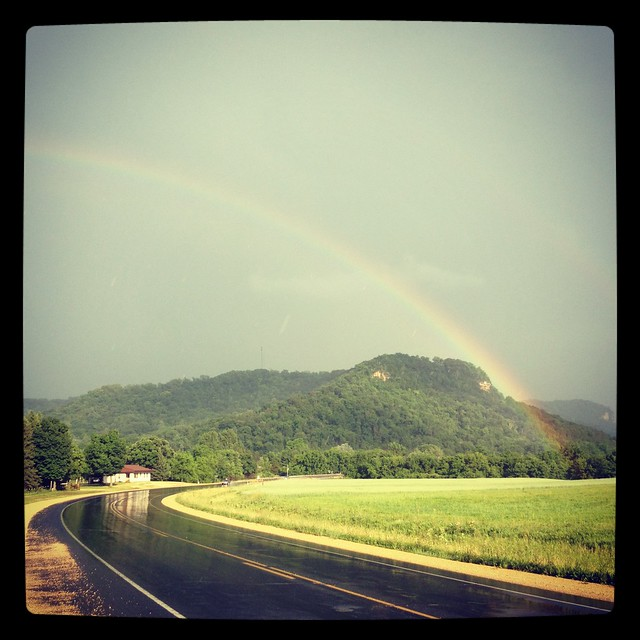 Misty Rainbow.