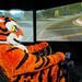 Clemson Tiger at CU-ICAR