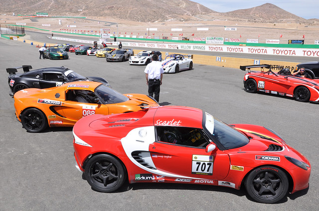 Lotus grid