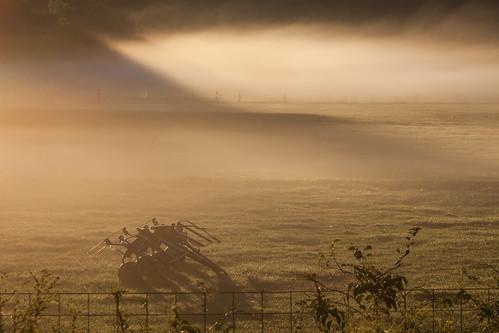 sunrise mist morning fog newengland farm field dew canon5dmarkii
