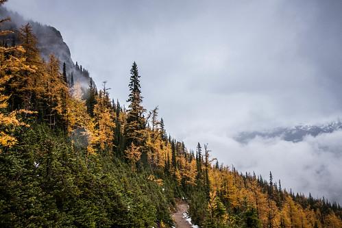 Saddleback Pass | by cec403